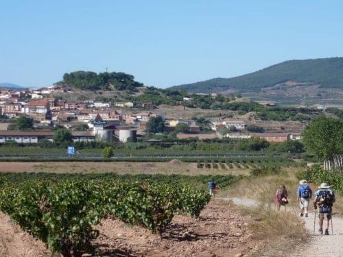 Camino de Santiago from Logroño