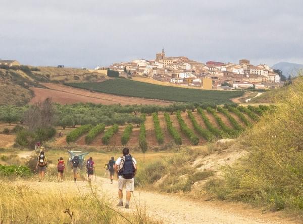 Enseñanzas que aprenderás en el Camino de Santiago