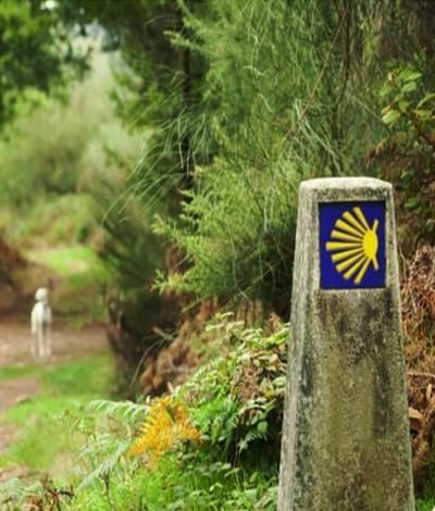 Der Camino Ingles