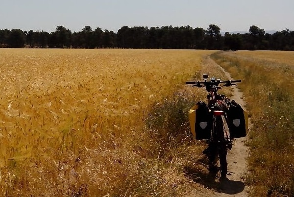 Summer is a good time to do the Camino by bicycle