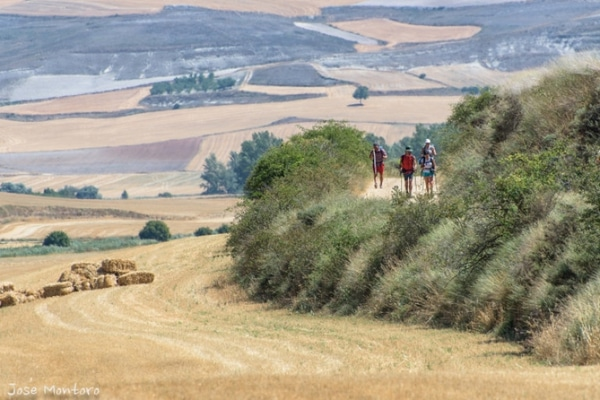 During the summer months are when more pilgrims decide to do the Camino de Santiago.