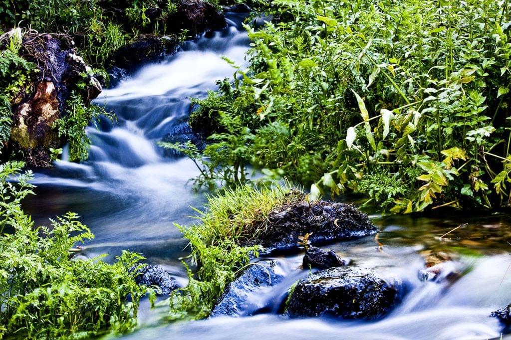 río sarela
