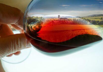 camino-santiago-wine