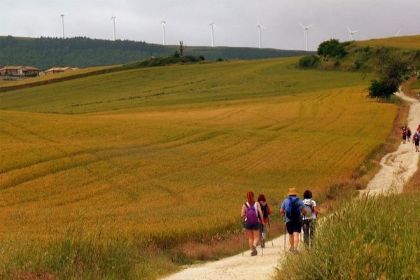 Camino de Santiago teachings