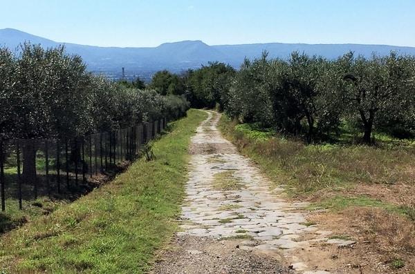 La Vía de la Plata es el trazado del Camino de Santiago que atraviesa España desde el Sur hasta Compostela.
