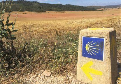 Camino de Pamplona a Logrono