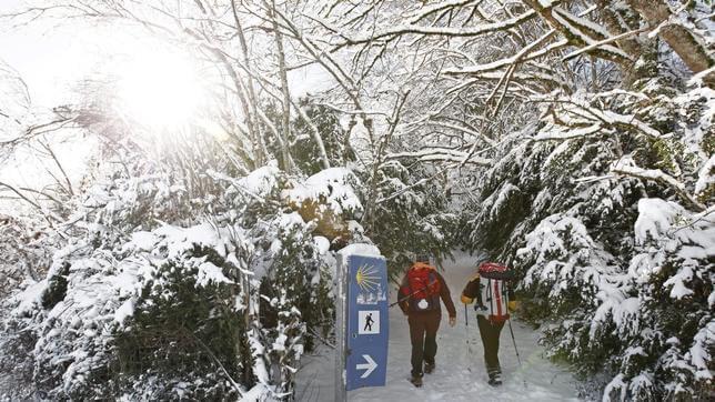 invierno camino de santiago
