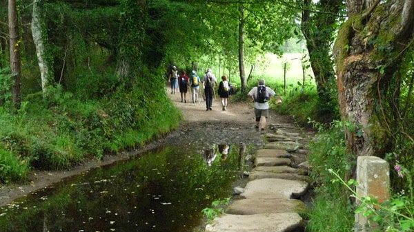 How many days are there needed to walk the Camino Frances from Sarria