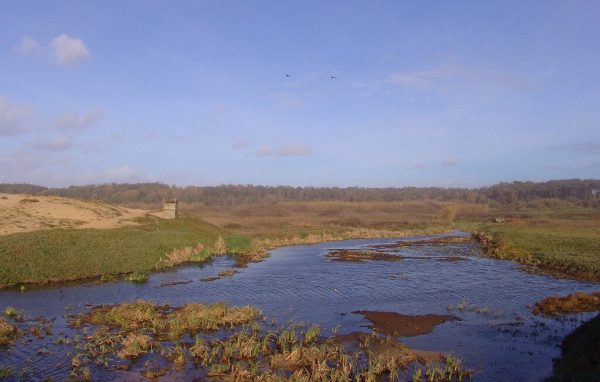Reserva Ornitologica de Mindelo