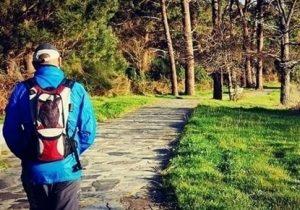 Camino-santiago-8-dias