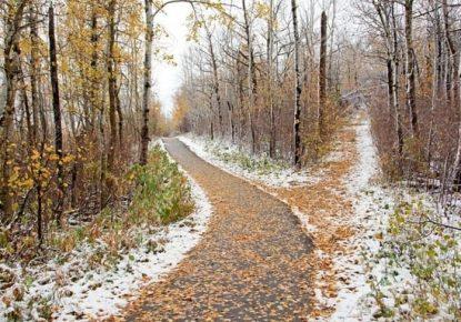 Camino-Santiago-diciembre