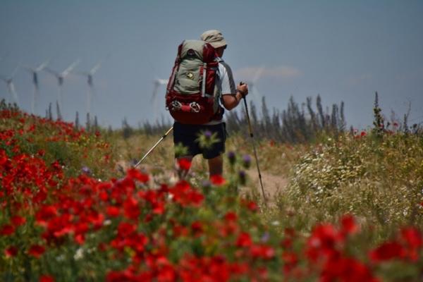 Si decides hacer el Camino de Santiago en junio podrás disfrutar de los últimos coletazos de la primavera.