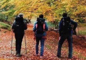 hacer-camino-santiago-octubre