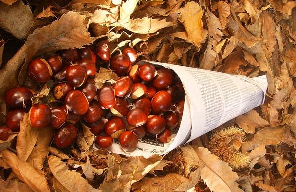En noviembre se celebra en toda Galicia el Magosto: una fiesta ancestral en el que los protagonistas son las castañas y la queimada.