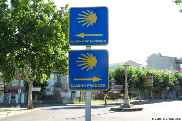 Information about multiple Caminos de Santiago