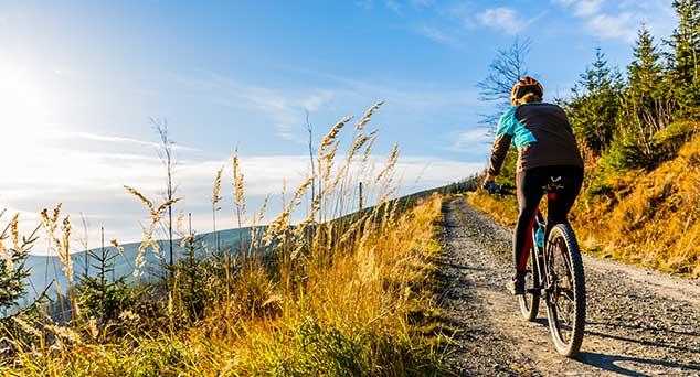 bosque-bicicleta