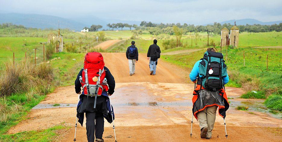 Camino del Norte desde Vilalba