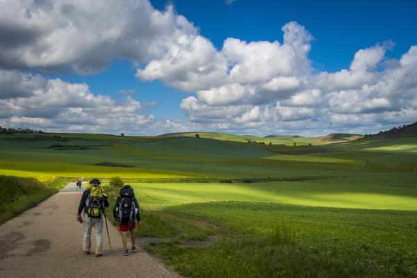 Muchas personas nos preguntan cuántas etapas tiene el Camino de Santiago y cuántos kilómetros diarios se hacen.