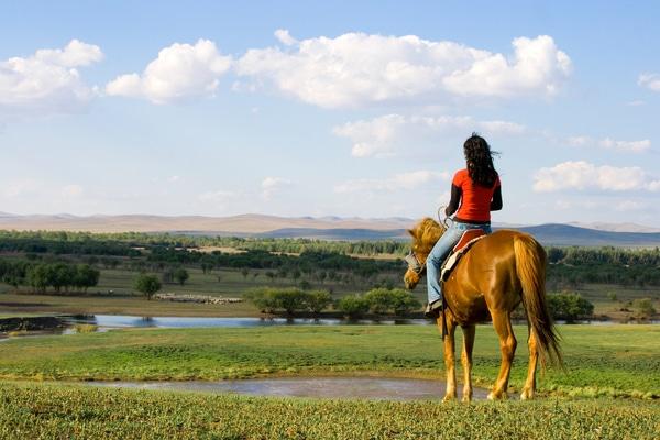 Hacer el Camino de Santiago a caballo es una forma tradicional de peregrinar a Santiago de Compostela.