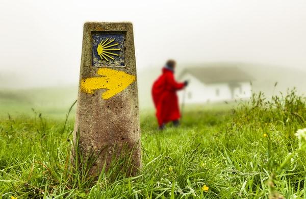 Para llegar a Roncesvalles lo más sencillo es trasladarse hasta Pamplona.