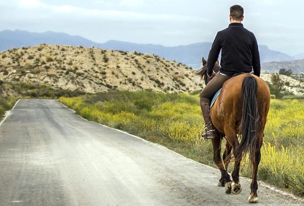 A la hora de hacer el Camino de Santiago cabalgando es imprescindible contar con un caballo que esté bien domado.