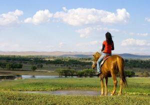 jinete-caballo-camino-santiago
