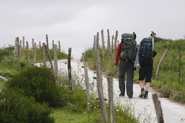 En los foros especializados en el Camino de Santiago podrás obtener información y consejos.