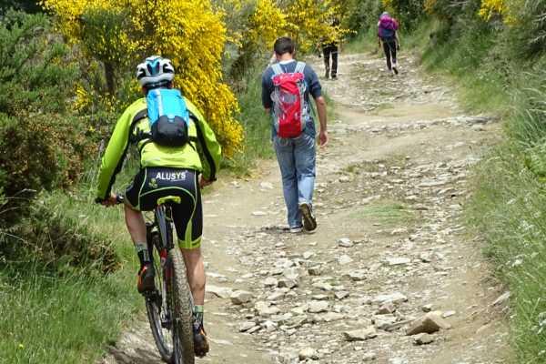 Eine typische Landschaft des Jakobswegs mit Pilgern zu Fuß oder mit dem Rad Foto von Isidre