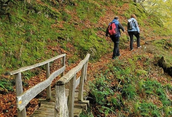6 days is enough time to make the Camino de Santiago without any worries