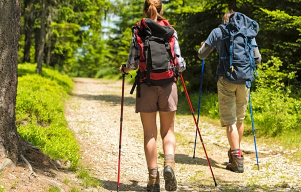 Seven days on the Camino de Santiago will allow you to obtain the Compostela, acquire the pilgrim's routine and feel the spectacular change that your body will notice after 4 days of travel
