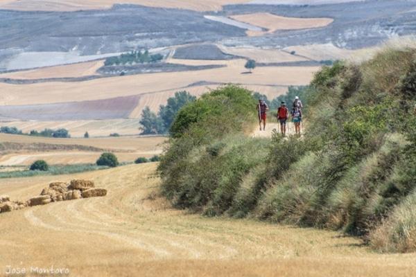 In den Sommermonaten entscheiden sich die meisten Pilger dafür, den Jakobsweg zu machen