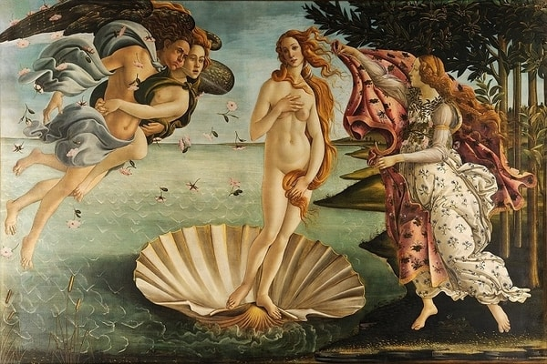 Scallop Shell and the association with the goddess Venus