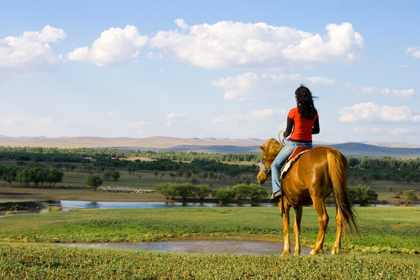 Doing the Camino de Santiago on horseback is a traditional way of pilgrimage to Santiago de Compostela.