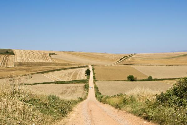 Der Abschnitt des französischen Weges, der durch die kastilische Hochebene führt, ist als die psychologische Prüfung der Pilgerfahrt bekannt.